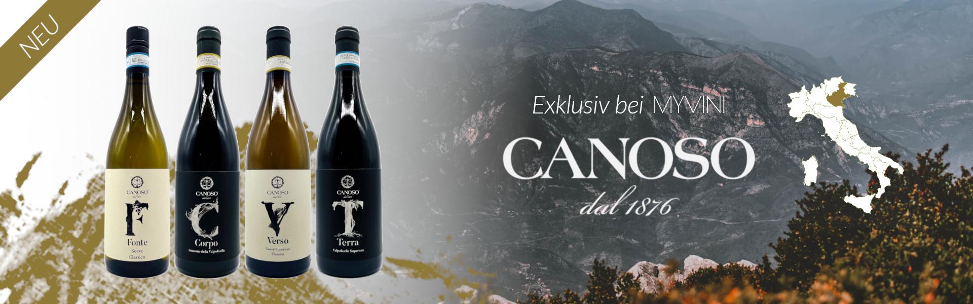 Exklusiv bei MYVINI | Weine von Canoso
